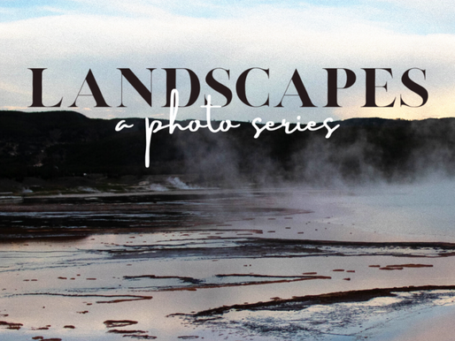 landscapes - annelisse kennedy-lewis