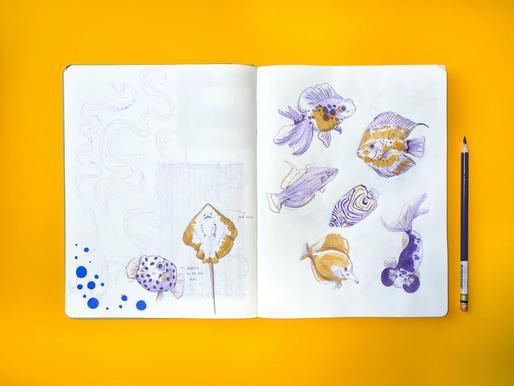 fishes + Color Illusions - Maga González