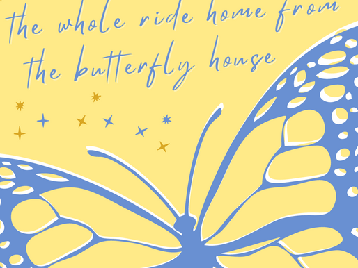 Anna Schechter - the whole ride home from the butterfly house