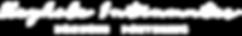 KI_logo_text-white.png
