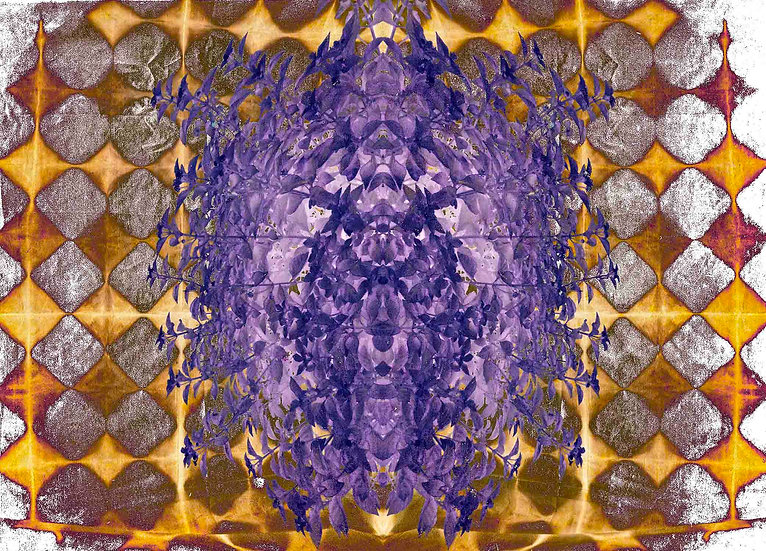 Birth of Violet Limited Edition print