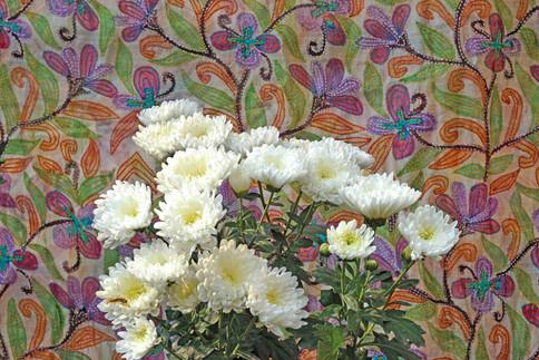 Floratic botany
