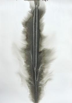 Ubiqua