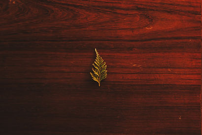 close-up-of-leaf-on-wooden-plank-325703.