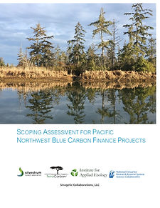 Scoping Assessment Report Cover Image.jp