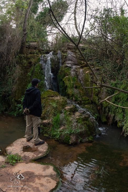 Cascade of the Alcube stream, Azeitão, Setúbal, District of Setúbal, Portugal.