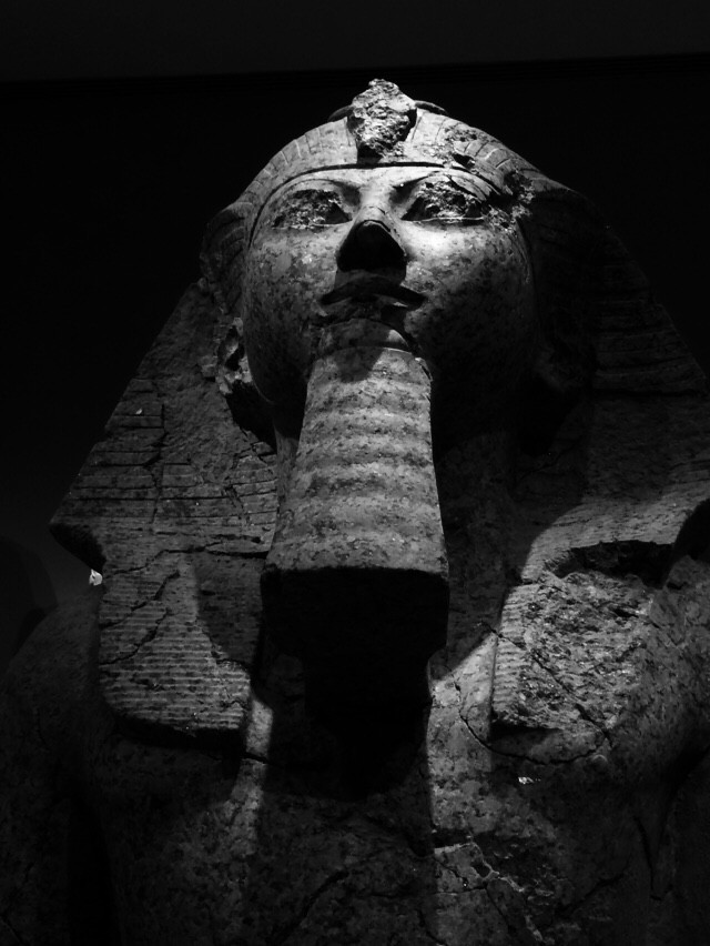 Kneeling Statue of Maatkare Hatshepsut (Property of Author)