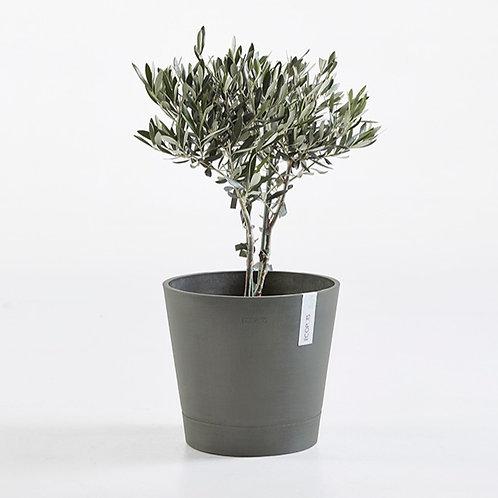 Ecopots - Venice Smart Pot