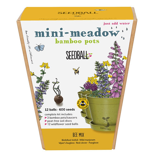 Mini Meadow Bamboo Pots - Bee Mix