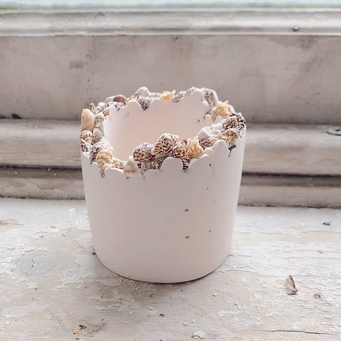 Mini eco resin cylinder pot with miniature shells