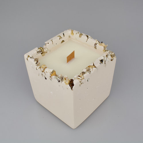 Miniature shell rim coconut and soy wax candle