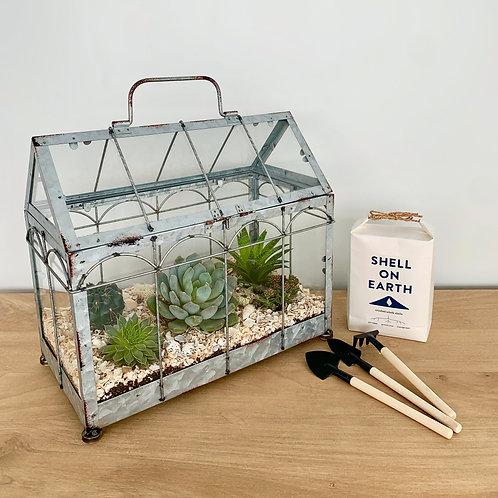 Greenhouse Terrarium Kit