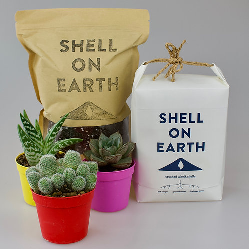 Shell on Earth Gift Pack