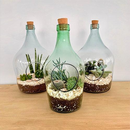 Glass Bottle Terrarium Kit