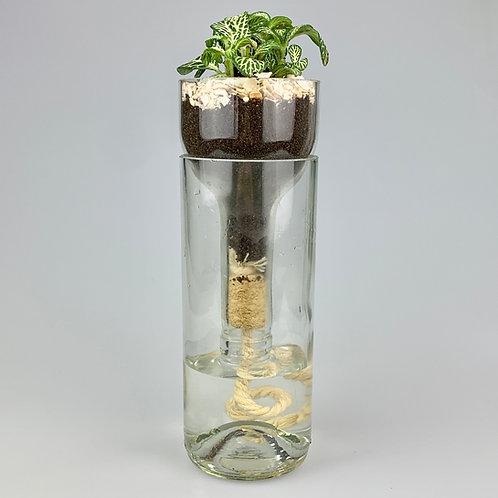 Self-watering glass bottle planter