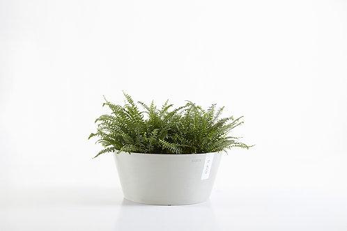 Ecopots - Frankfurt Plant Pot