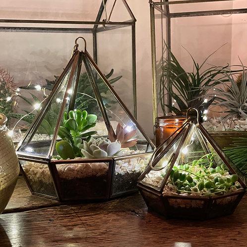 Hanging Terrarium Kit - Set of 2