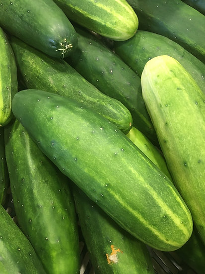 Cucumbers  (Regular and Kirby)