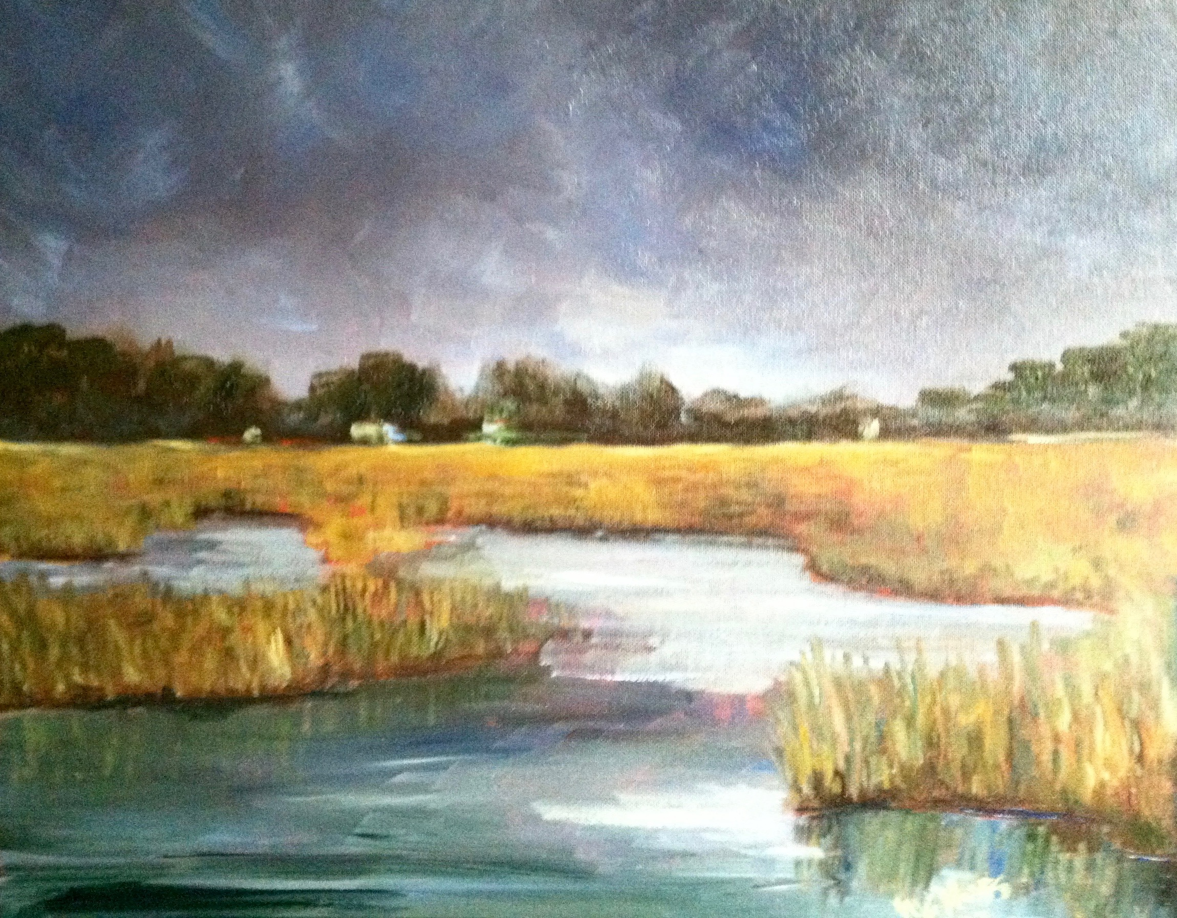 Marsh Before the Storm