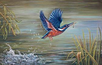 Kingfisher%20in%20Flight_edited.jpg