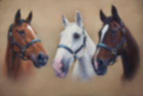 Holly Kerry and Lillie Horse pastel portrait