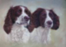 Barney and Roby Springer Spaniels  Pastel