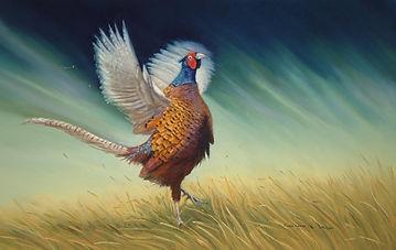 Male pheasant in pastel