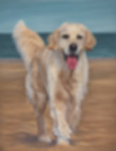 Orla Golden Retriever in Pastel