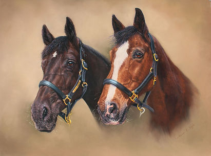 Noodle and Miller Horse Portrait in Pastel