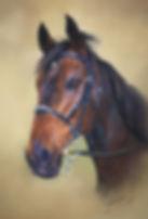 Cinnamon Pastel Horse Portrait Catherine Inglis