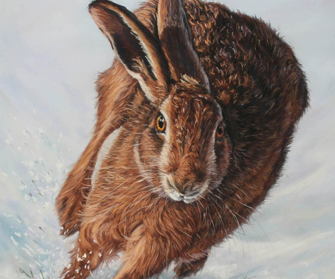 Hare Running in the Snow