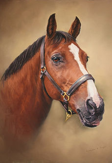 Simon Horse portrait in pastel
