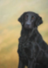Ebony Flatcoated Retreiver  Pastel