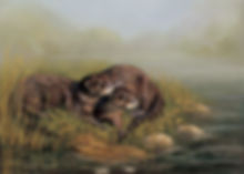 Otters on the Riverbank in pastel