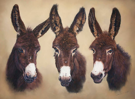 Mr Dan Daisy & Darcey Trio donkey portrait in pastel