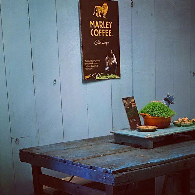 #koeiesteyn #marley #marleycoffee #servingthebest #rohanmarley #bobmarley #coffeehouse #fairtrade #w