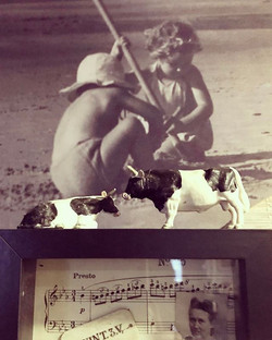 #koeiesteyndesign #beach #cow #design #vintagephoto #rockanje #weekend #playtime #composition #music