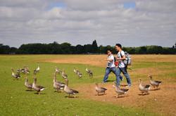 2013英西組-(牛津)大自然即是生活中的一部分-余雅筠