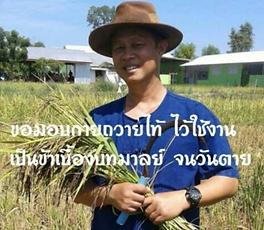 ดอกเตอร์บนแปลงเกษตร_ต้นแบบความสำเร็จของค