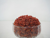 ข้าวอินทรีย์ กับข้าว ปลอดสาร ต่างกันอย่างไร l Organic Rice Vs Chemical-free Rice