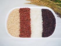 หลักการเกษตรอินทรีย์ l Organic agriculture