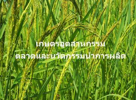 กฤษณกรณ์ ยกระดับสินค้าเกษตร เข้าสู่  THAILAND 4.0 เกษตรอุตสาหกรรม