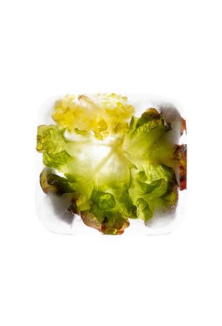 2 salade-congélation-Joy Forgas Deplanch