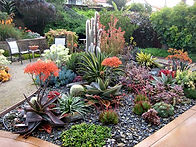 Fresno Landscaping and water gardens Drought solutions