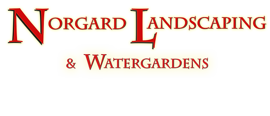 Fresno landscaping and water gardens