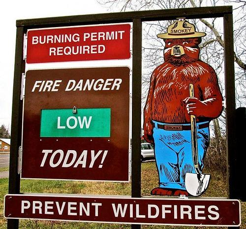 Smokey Bear Low-Permits.jpg