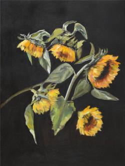 6015_SunflowersOnTheDarkBackground