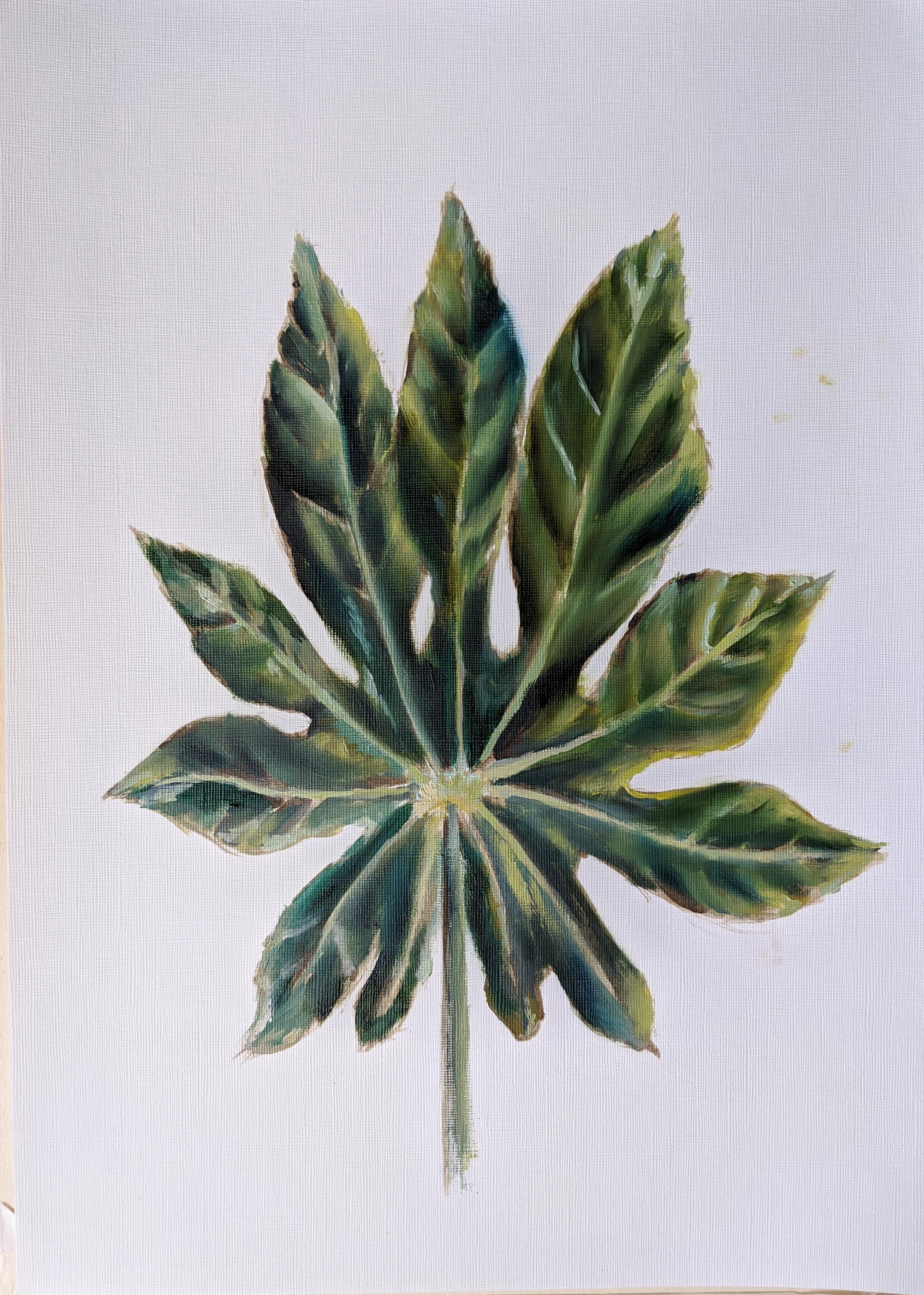Green fig leaf