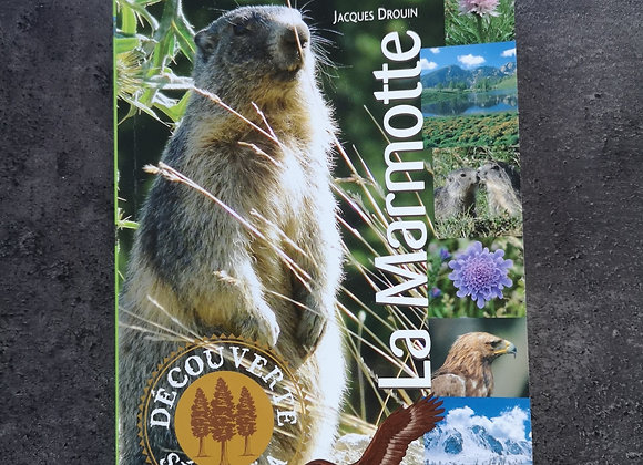 Livre : La marmotte