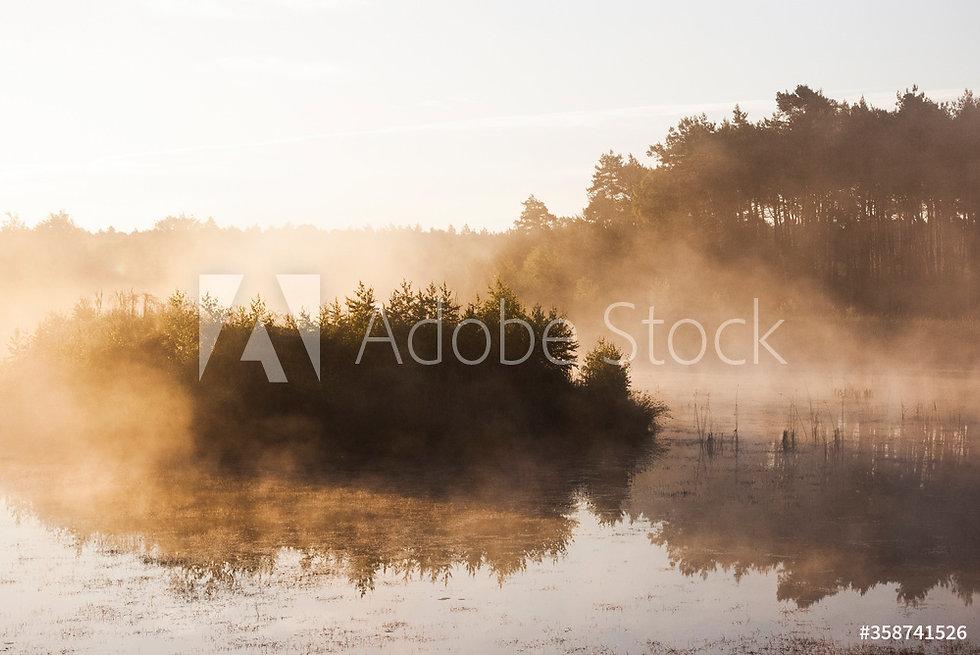 AdobeStock_358741526_Preview.jpeg